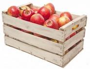 Apfelino Mitarbeiterobst